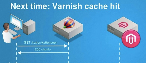 varnish serve cache